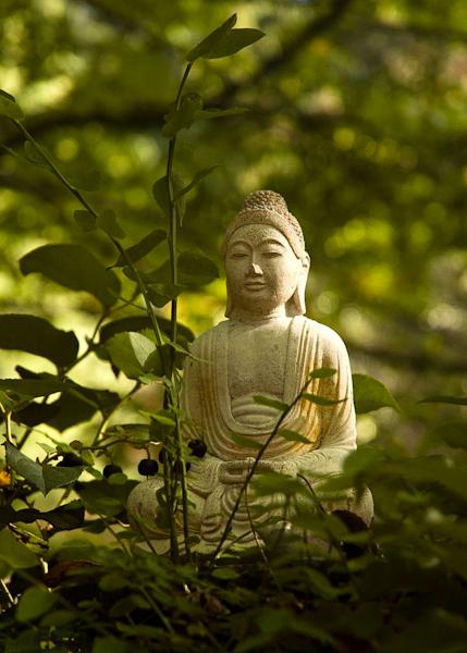 The-Buddha-Statue2-680x1024-4